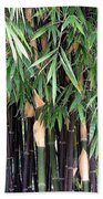 Black Bamboo Beach Towel
