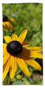 Black Eyed Susans Beach Towel