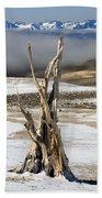 Bristlecone Fog And Sierra Nevada 1 Beach Towel