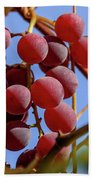 Bunch Of Grapes Beach Towel