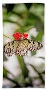 Paper Kite Butterfly Beach Towel