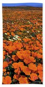 California Poppies Desert Dandelions California Beach Towel