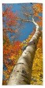 Canadian Autumn Beach Sheet