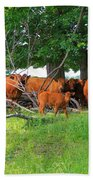 Cattle Herd Beach Towel
