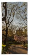 Central Park Nyc Beach Towel