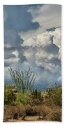 Chasing Clouds Again  Beach Towel