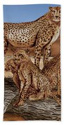 Cheetah Family Tree Beach Towel