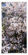 Cherry Blossom Tree Beach Towel