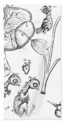 Chick Embryology, Malpighi, 1687 Beach Towel