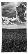 Cocodrie Marsh Beach Sheet