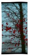 Cold Day In Winter Beach Towel