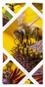 Collage Of Western Honey Bee Beach Towel