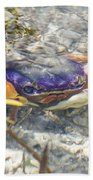 Colorful Crabstract 2 Beach Towel