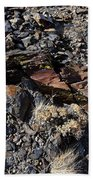 Colorful Lichens Growing On Rocks Along Monument Ridge, In The Eastern Sierra Nevadas Beach Towel