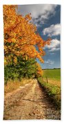 Country Road And Autumn Landscape Beach Towel