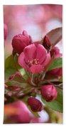 Crab Apple Blossom Beach Sheet