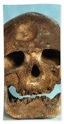 Cro-magnon Skull Beach Towel