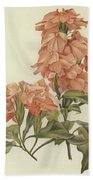 Crossandra Beach Towel