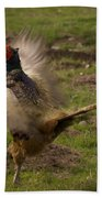 Crowing Pheasant Beach Towel