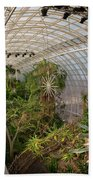 Crystal Bridge Beach Towel