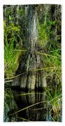 Cypress Tree Beach Towel