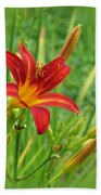Daylily On Green Beach Towel
