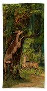 Deer In The Forest, 1868 Beach Towel