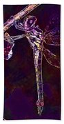 Dragonfly Insect Winged Insect  Beach Towel