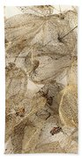 Dried Fruits Of The Cape Gooseberry Beach Towel