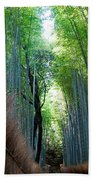 Earth Moments Gallery I Beach Towel