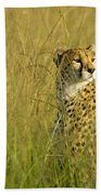 Elegant Cheetah Beach Towel