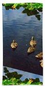 Exotic Birds Of America Ducks In A Pond Beach Towel