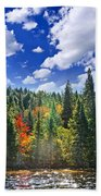 Fall Forest In Sunshine Beach Towel