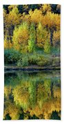 Fall Reflections Beach Sheet