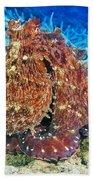 Fiji, Day Octopus Beach Towel
