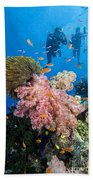 Fiji Underwater Beach Towel