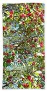 Firethorn Tree Beach Towel