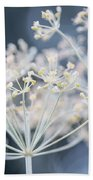 Flowering Dill Clusters Beach Sheet