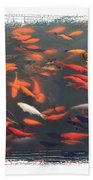 Koi Pond With Framing Beach Towel