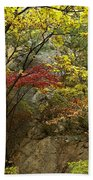 Forest In Autumn Beach Sheet
