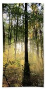 Forest Light  Beach Towel