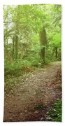 Forest Walking Trail 1 Beach Towel
