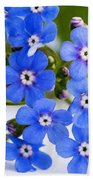 Forget-me-not Beach Towel