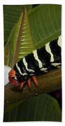 Frangipani Tree And Caterpillar Beach Towel