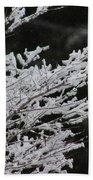 Frozen Branches Beach Towel
