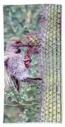 Gilded Flicker 4167 Beach Towel