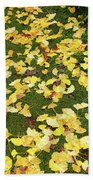 Ginkgo Biloba Leaves Beach Towel