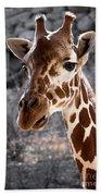 Giraffe Head Beach Towel