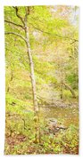 Glimpse Of A Stream In Autumn Beach Towel