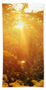 Golden Days Of Autumn Beach Towel